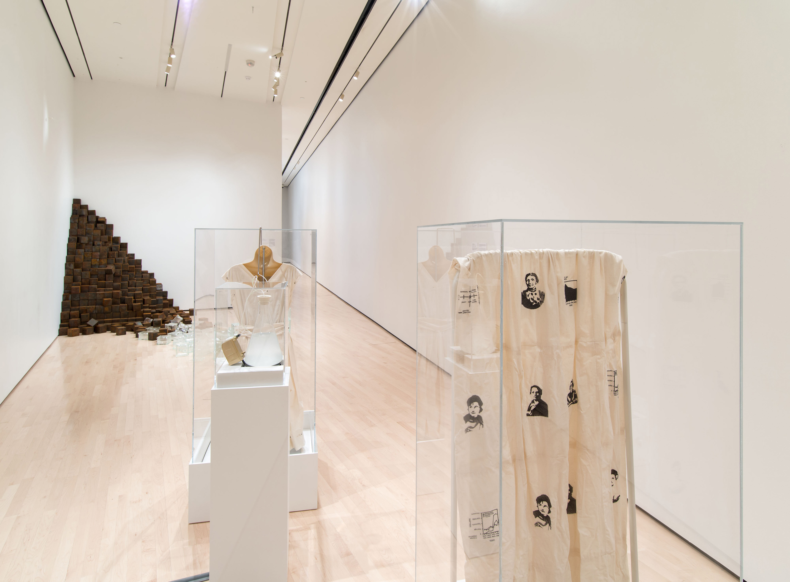 2015 Master of Fine Arts Exhibition, installation view at the Eli and Edythe Broad Art Museum at Michigan State University, 2015. Photo: Alex Nichols