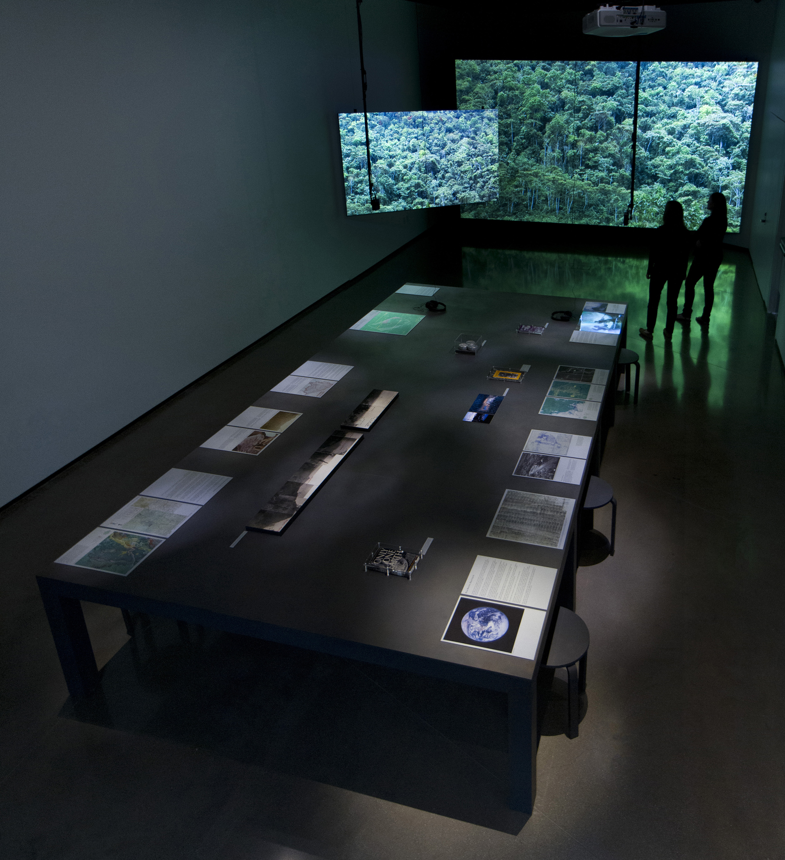 <i>The Land Grant: Forest Law</i>, installation view at the Eli and Edythe Broad Art Museum at Michigan State University, 2014. Photo: Eat Pomegranate Photography