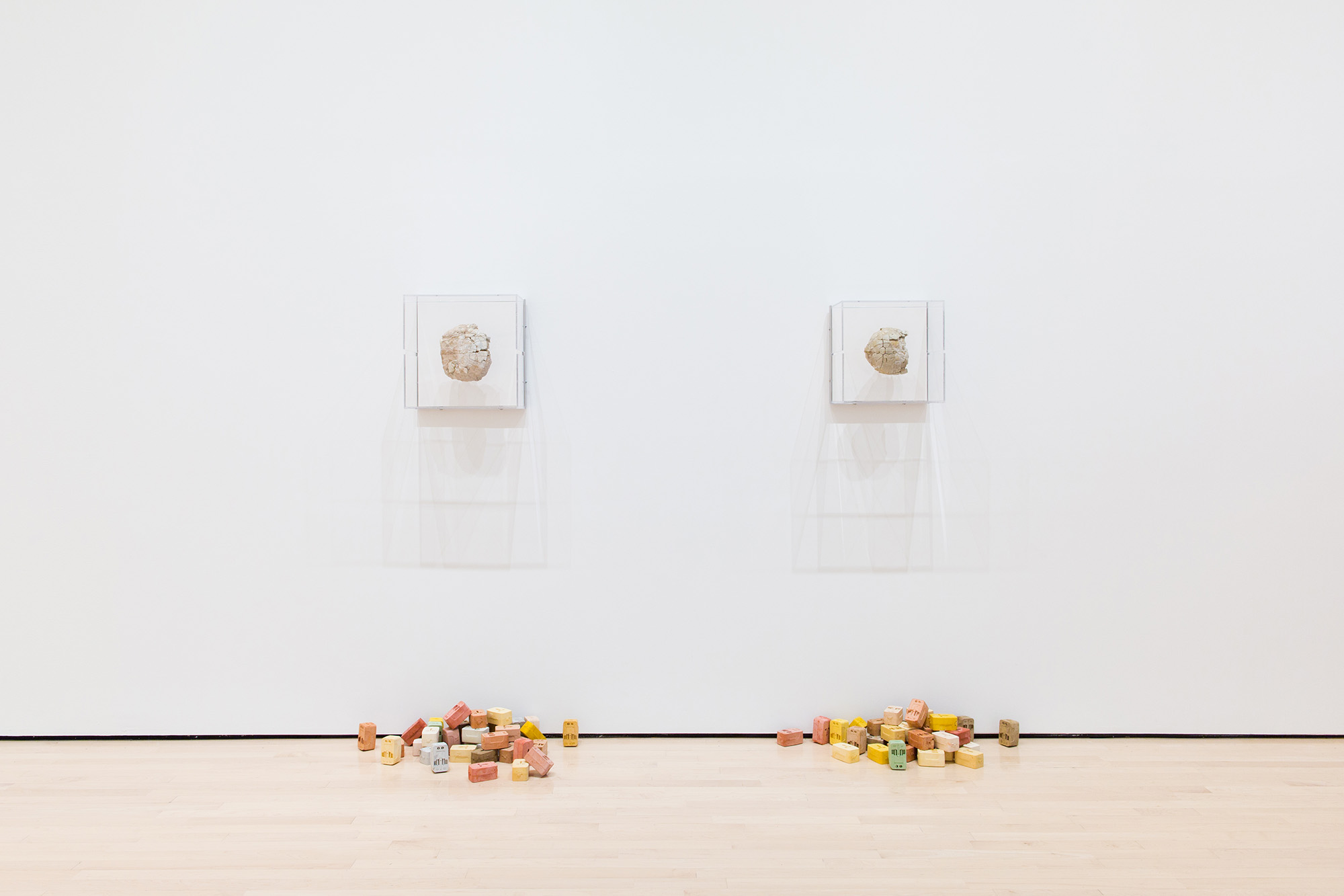 <i>Field Station: Daniel G. Baird</i>, installation view at the Eli and Edythe Broad Art Museum at Michigan State University, 2017. Photo: Eat Pomegranate Photography