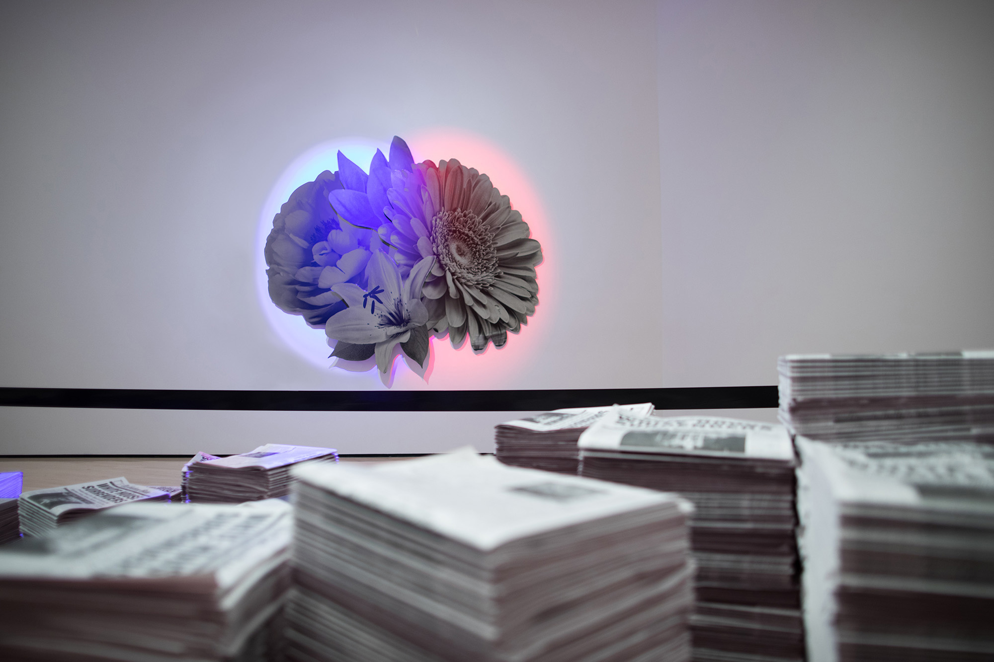 <i>Field Station: Kathryn Andrews</i>, installation view at the Eli and Edythe Broad Art Museum at Michigan State University, 2018. Photo: Eat Pomegranate Photography