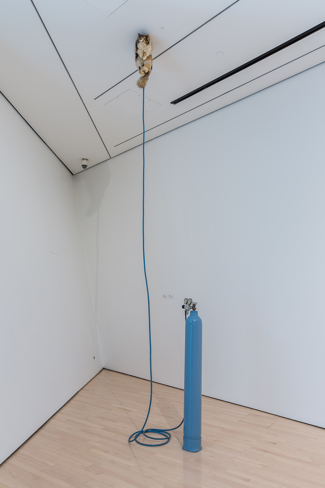 L to R: Ugo Rondinone, <i>​Clockwork for Oracles II</i>​, 2008, courtesy the artist and Gladstone Gallery, New York and Brussels; Jonathan Monk, ​<i>Second Hand Daily Exchange</i>​, 2006, courtesy the artist and Lisson Gallery, New York and London; Wolf Vostell, ​<i>Betonbuch​ (Concrete Book)</i>, 1971, University of Chicago Library, Special Collections Research Center; installation view at the MSU Broad, 2017. Photo: MSU Broad