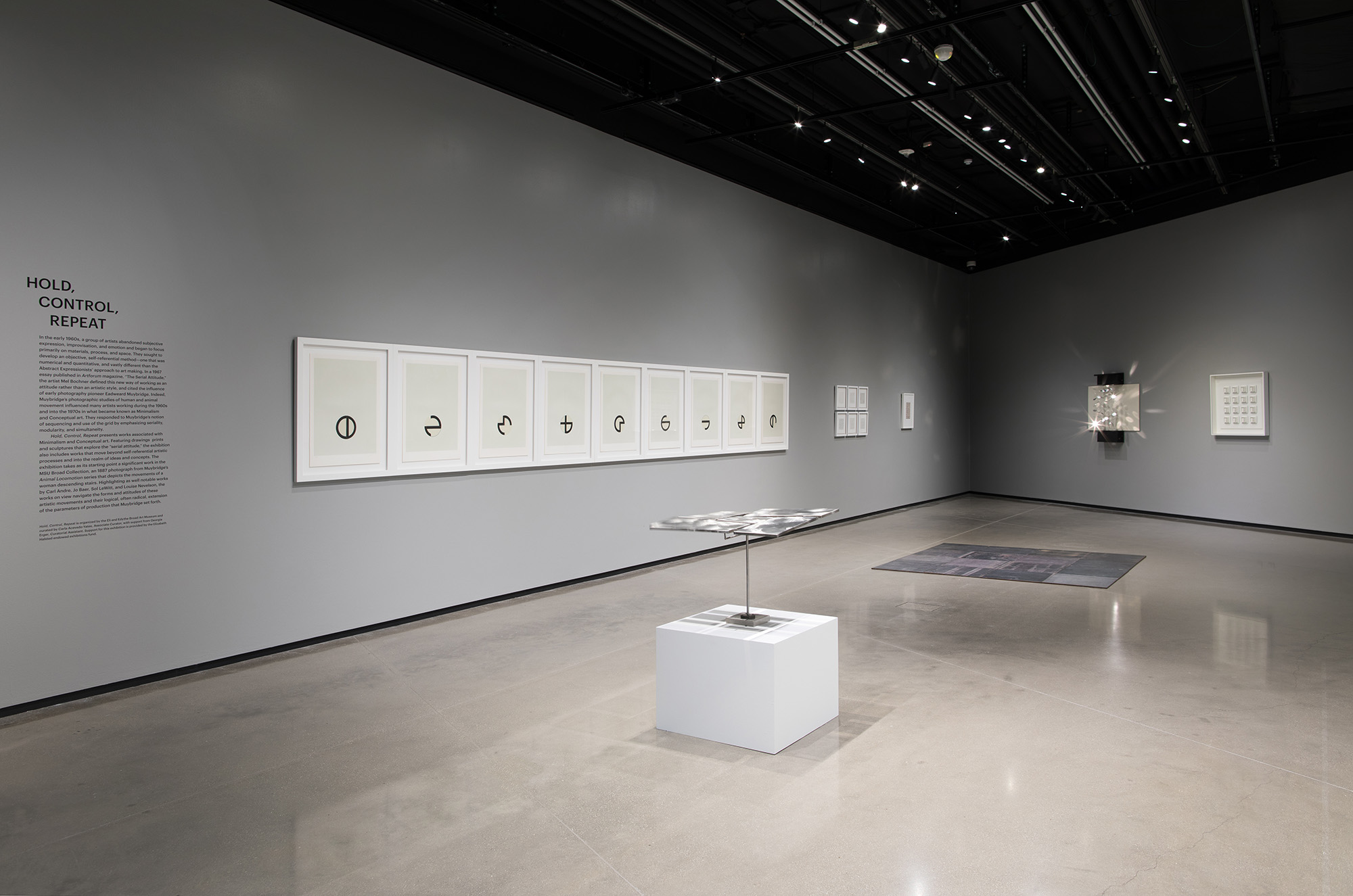 <i>Hold, Control, Repeat</i>, installation view at the Eli and Edythe Broad Art Museum at Michigan State University, 2018. Photo: Eat Pomegranate Photography