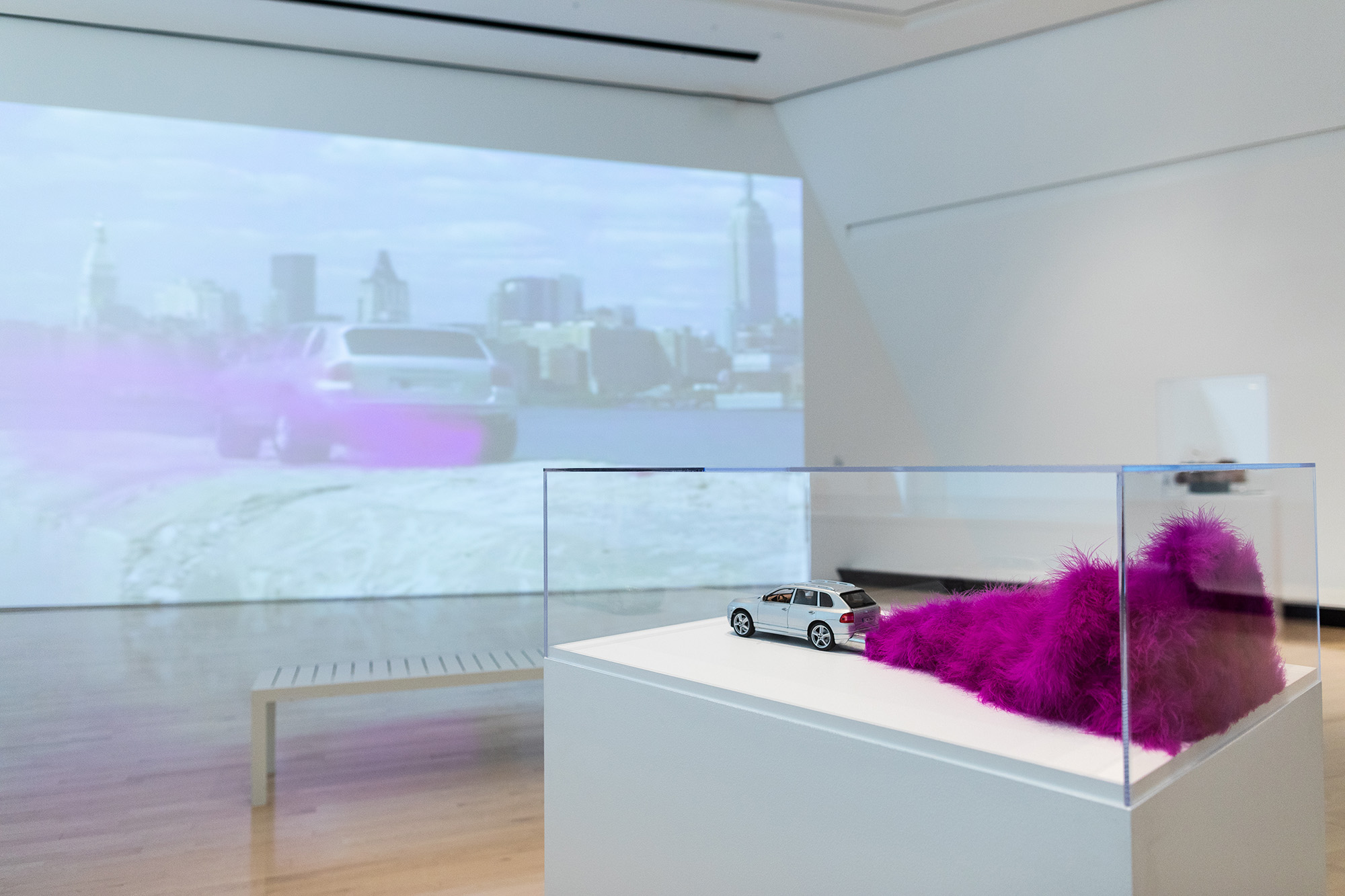 <i>MATTER(S) matter(s): Bridging Research in the Arts and Sciences</i>, installation view at the Eli and Edythe Broad Art Museum at Michigan State University, 2018. Photo: Eat Pomegranate Photography