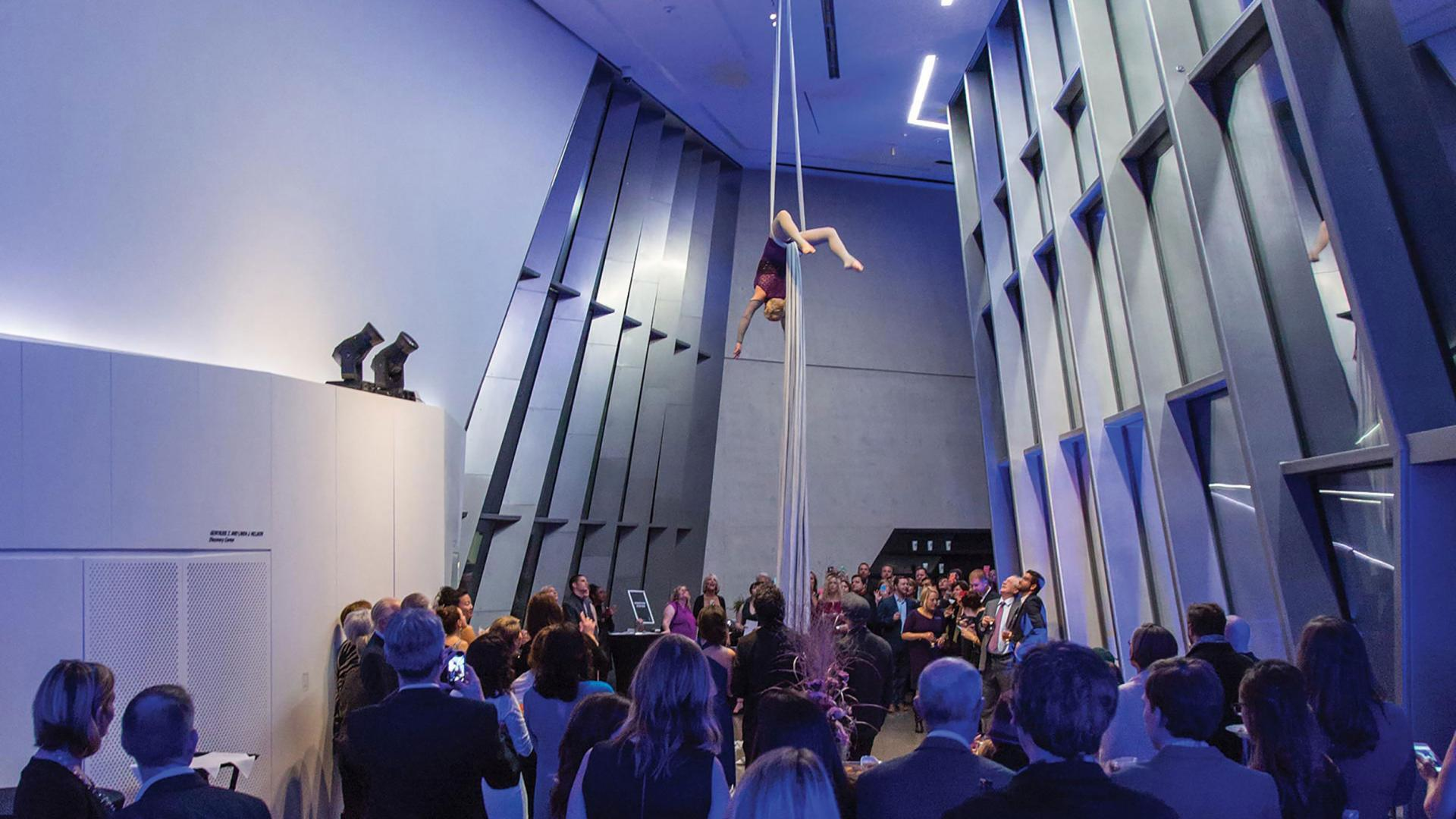 Crowd watching an aerialist perform